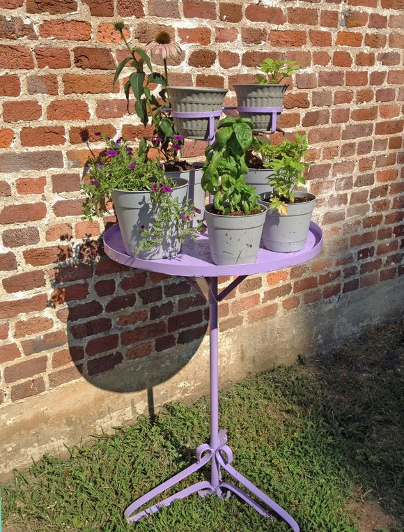 Diy parrot perch plant stand w plants