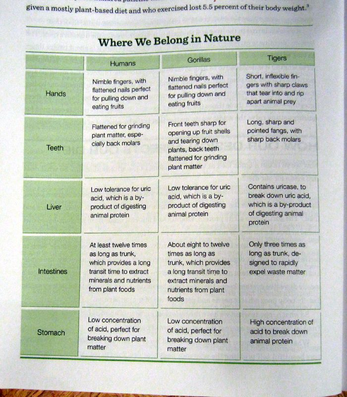 Where we belong in nature chart