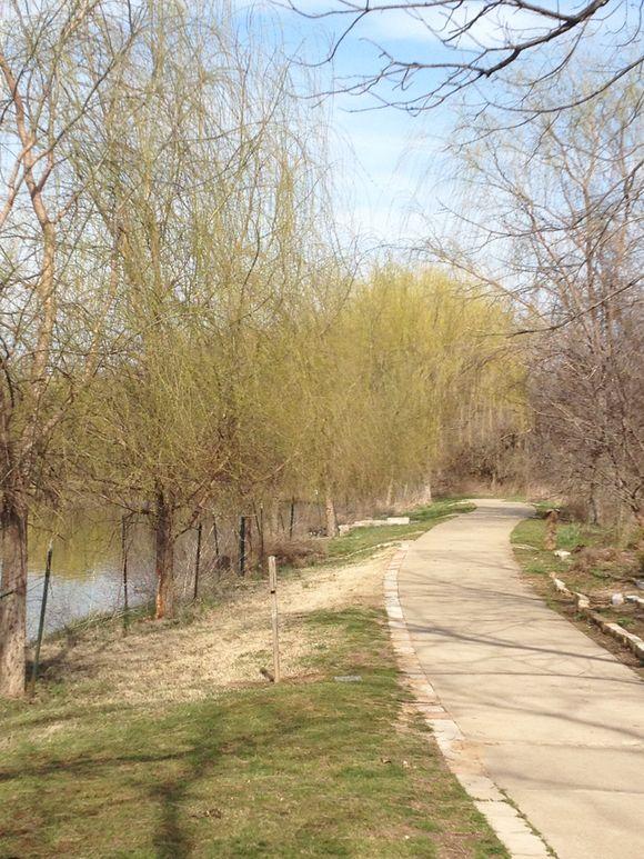 April park lula against tree