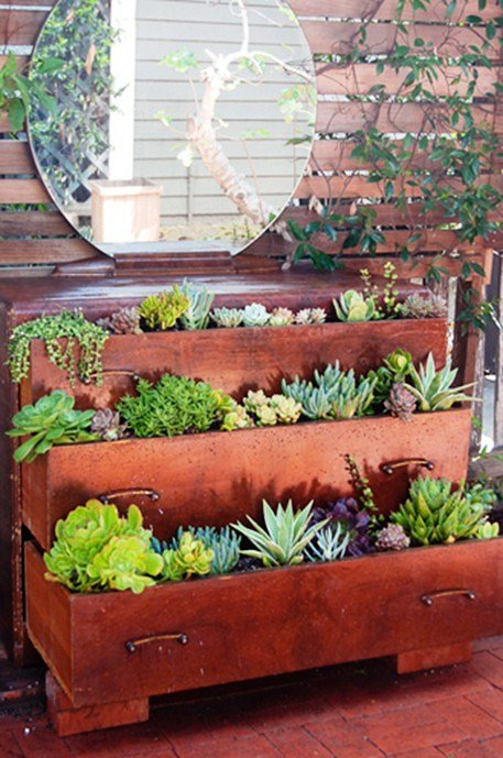 Bricks and succulents plans in old antique dresser