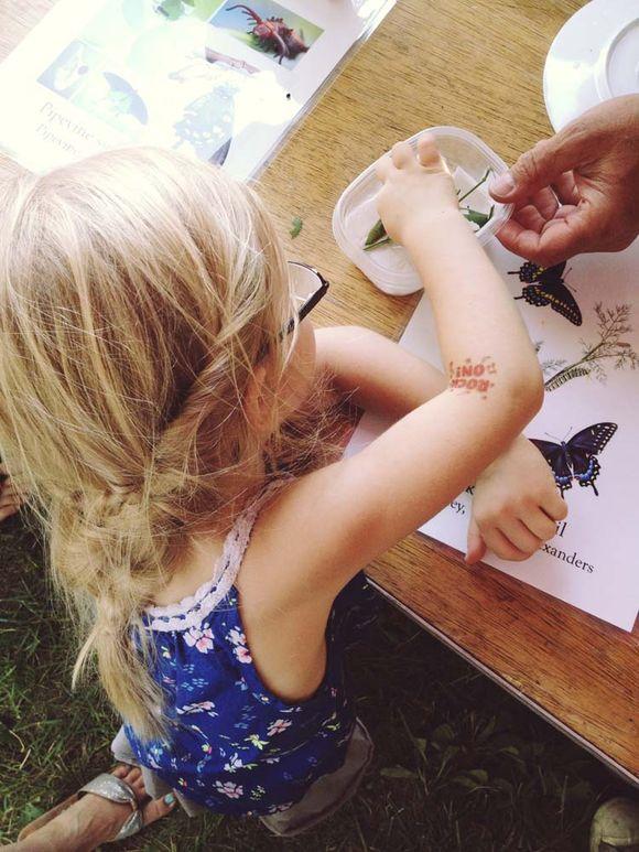 July butterfly festival lula touching caterpillars